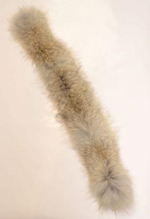 Coyote kapucnicsík